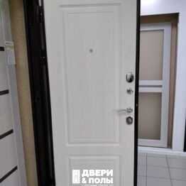 дверь металлическая 10 см Толстяк РФ Белый Ясень